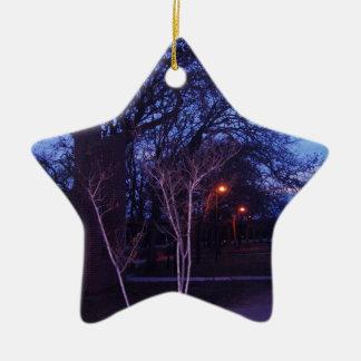paisaje.png ceramic ornament