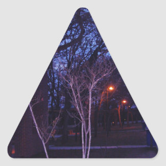 paisaje.png triangle sticker