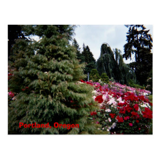 Paisaje Portland, Oregon de Rosey Tarjeta Postal