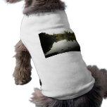 Paisaje sereno del Central Park, New York City Camisa De Mascota