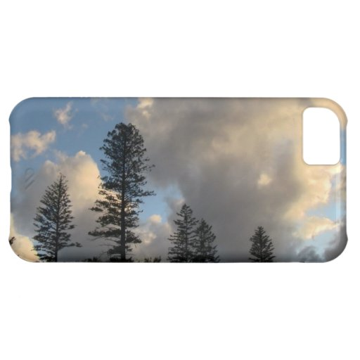 Paisaje Skyscape Waterscape de Idaho del barranco  Funda Para iPhone 5C