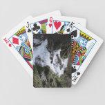 Paisaje Skyscape Waterscape de Kooskooskia Idaho Cartas De Juego