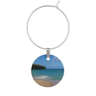 Paisaje tropical de las vacaciones de la playa de identificadores de copas