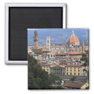 Paisaje urbano de Florencia Iman De Nevera