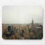 Paisaje urbano del Midtown de New York City Tapetes De Raton