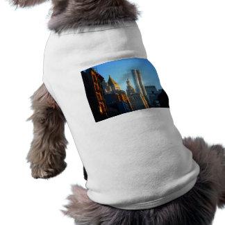 Paisaje urbano financiero del horizonte del distri camisetas de perrito
