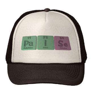 Paise-Pa-I-Se-Protactinium-Iodine-Selenium.png Gorro De Camionero