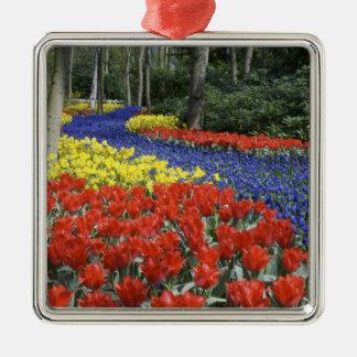 Países Bajos, Holanda, Lisse, jardines de Adorno Navideño Cuadrado De Metal