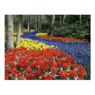 Países Bajos, Holanda, Lisse, jardines de Postal
