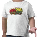 Países Bajos, jardines de Keukenhoff, tulipanes Camisetas