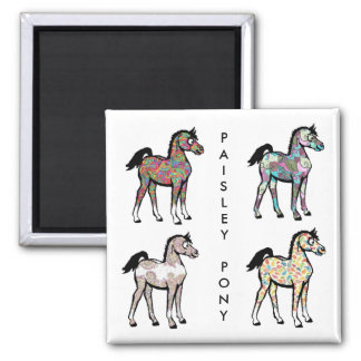 Paisley Pony Magnets