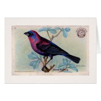Pájaro 04 del vintage tarjeta pequeña