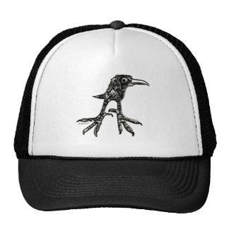 Pájaro adolescente gorras