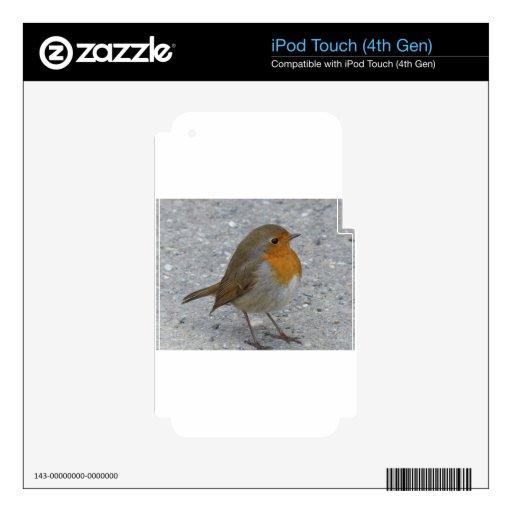 Pájaro agradable calcomanías para iPod touch 4G