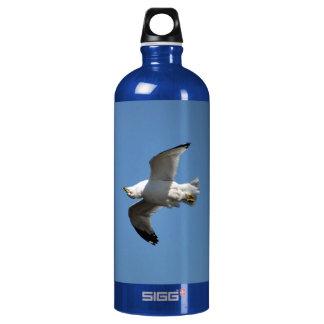 Pájaro-amantes de agua dulce blancos de la gaviota
