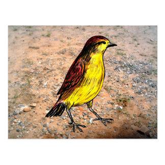 Pájaro amarillo postales