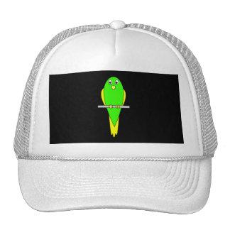 Pájaro amarillo y verde. Parakeet. Negro Gorra