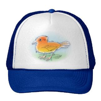 pájaro anaranjado gorras