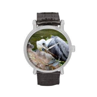 pájaro arqueado cabeza marrón c del pelícano reloj