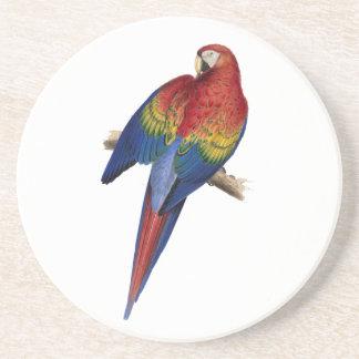 Pájaro azul amarillo rojo del loro del Macaw Posavaso Para Bebida