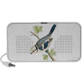 Pájaro azul azul bonito - LOCUTORES Portátil Altavoz
