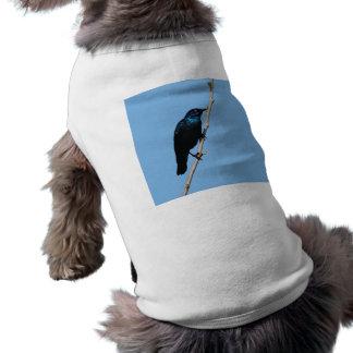 Pájaro azul brillante de Starling de la felicidad Playera Sin Mangas Para Perro