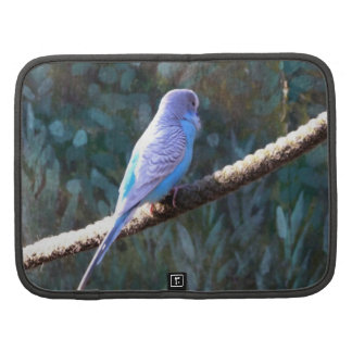 Pájaro azul de Budgie Planificador
