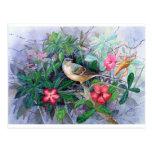 Pájaro azul en jardín postales