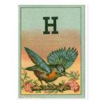 Pájaro azul H Postales