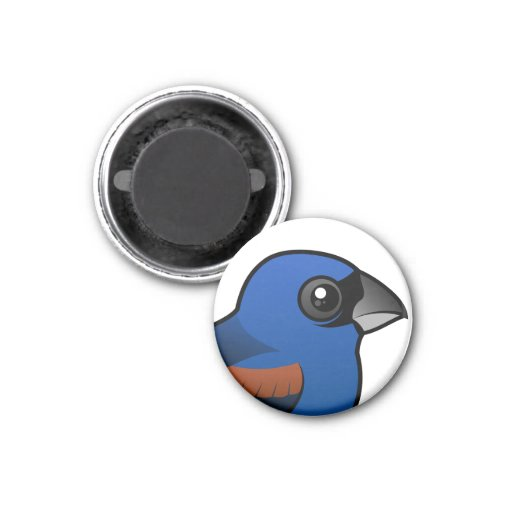 Pájaro azul imanes de nevera