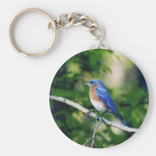Pájaro azul llavero redondo tipo pin