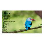 Pájaro azul tarjetas de negocios