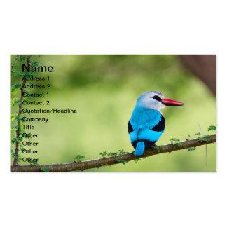 Pájaro azul tarjetas de visita