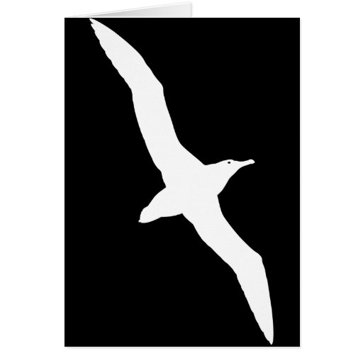 Pájaro blanco del albatros en vuelo felicitacion