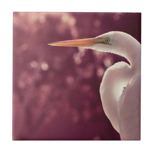 pájaro blanco del egret en el tinte correcto de Bo Azulejos Cerámicos