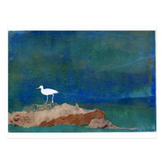 Pájaro blanco tarjeta postal