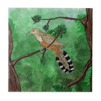 Pájaro Bobo Mayor/Puertorrican Lizard Cuckoo Tile