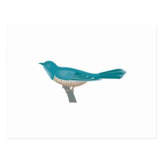 pájaro bonito del cuco postal