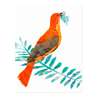 Pájaro bonito del rojo de la paz de la rama verde tarjeta postal