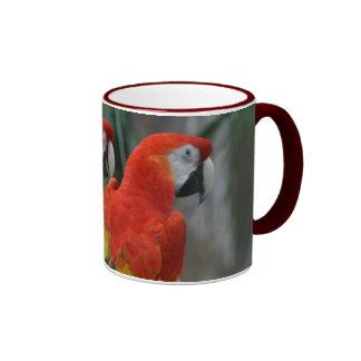Pájaro bonito taza a dos colores