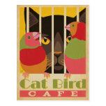 Pájaro Café del gato Postales