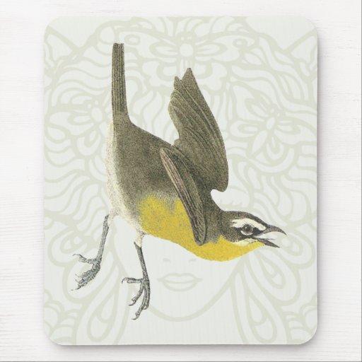 Pájaro cantante Amarillo-breasted de la charla Tapete De Raton
