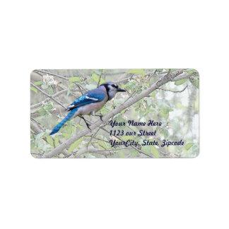 Pájaro cantante del arrendajo azul etiquetas de dirección