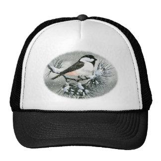 Pájaro capsulado negro del Chickadee Gorra