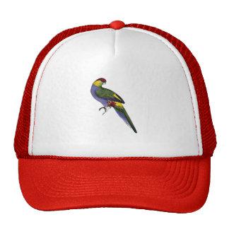 Pájaro capsulado rojo del loro del Parakeet Gorros Bordados