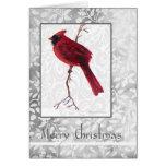 Pájaro cardinal en tarjeta de las Felices Navidad
