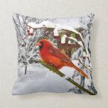 Pájaro cardinal, nieve, invierno, almohada de tiro
