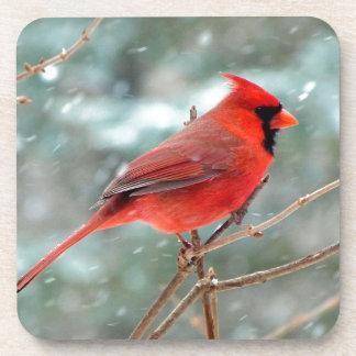 Pájaro cardinal rojo en invierno de la nieve posavaso