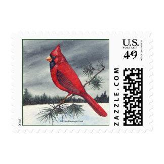 Pájaro cardinal rojo sello