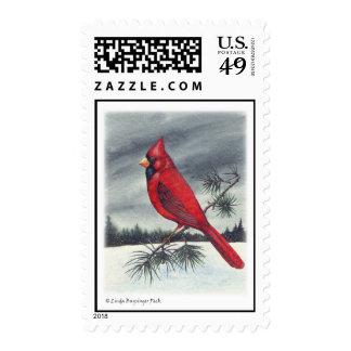 Pájaro cardinal rojo sellos